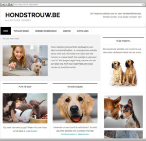 website-portfolio45